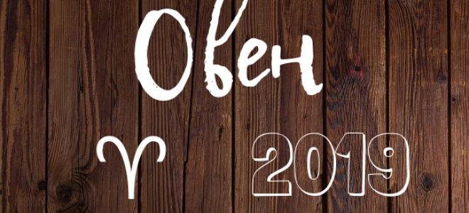 Гороскоп: Овен на 2019 год (мужчина, женщина)