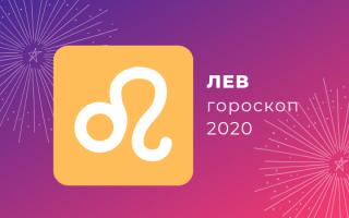 Что ждет Льва в 2020 году: гороскоп по месяцам