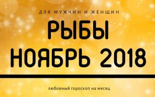 Любовный гороскоп: Рыбы на ноябрь 2018 года для женщин и мужчин