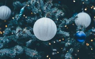 Год Петуха 2017: Гороскоп для всех знаков (как встречать)