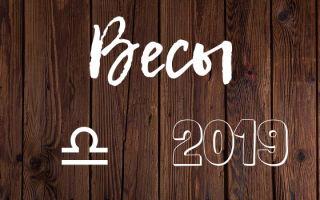 Год Свиньи 2019 для Весов: для мужчин и женщин