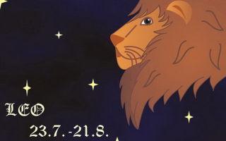 Гороскоп для Льва на февраль 2017 года (для женщин)