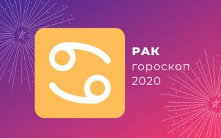 Рак: гороскоп на 2020 год, точный прогноз (женщина, мужчина)