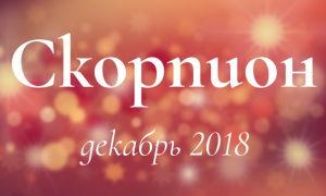 Гороскоп для Скорпиона на декабрь 2018 года для женщин и мужчин