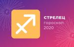 Год Крысы для Стрельца: характеристики 2020 (что ожидает?)