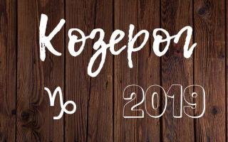 Гороскоп на 2019 год: Козерог (женщина, мужчина) от Павла Глобы, от Василисы Володиной – что ждет в новом году