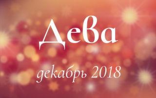 Любовный гороскоп на декабрь 2018: Дева (мужчина, женщина)