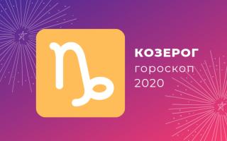 Для Козерога: год Крысы 2020 (характеристики)