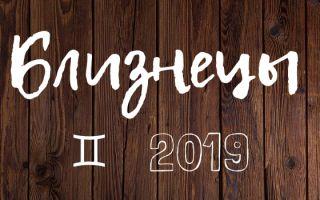 Год Свиньи 2019 для Близнецов