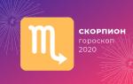 Скорпион: гороскоп на 2020 год (точный прогноз, женщина, мужчина)