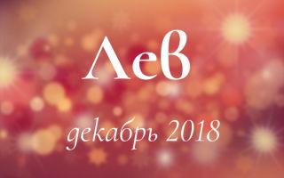 Любовный гороскоп: Лев на декабрь 2018 года (мужчина, женщина)