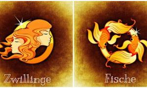 Близнецы и Рыбы: совместимость в любовных отношениях