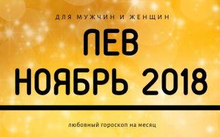 Любовный гороскоп на ноябрь 2018 для Льва (для мужчин и женщин)