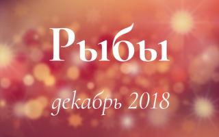 Любовный гороскоп: Рыбы на декабрь 2018 для мужчин и женщин