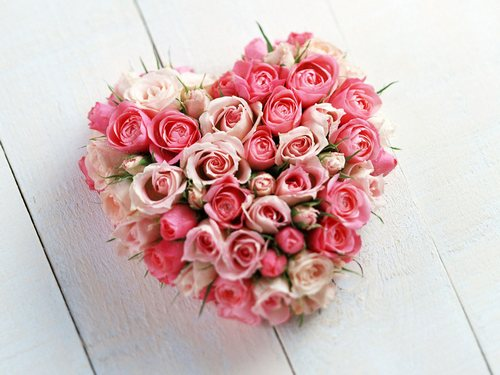 Розы по фен-шуй