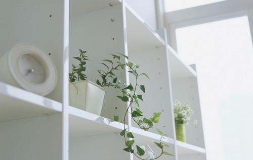 Как обустроить маленькую квартиру по фен-шуй