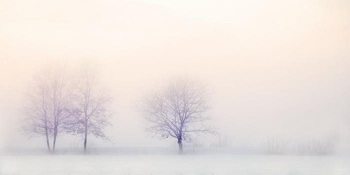 сонник снег белый чистый много