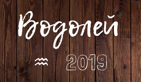гороскоп на 2019 год водолей мужчина
